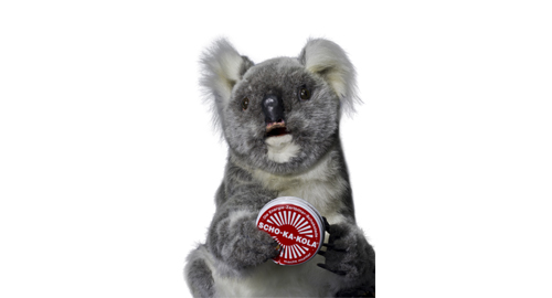 Koalabär mit Schokakola Dose