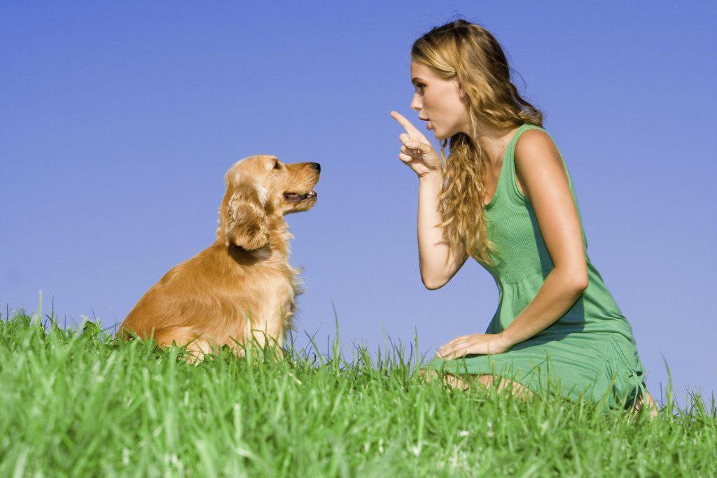 Frau gibt Hund Kommandos