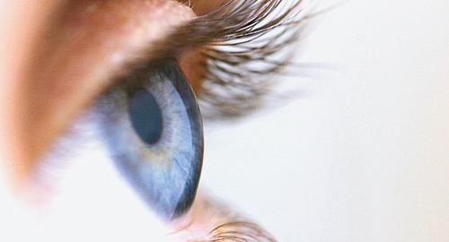 Iris und blaues Auge ganz nah fotografiert
