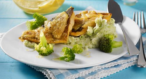 Rezept mit Lachsforellenfilets und Püroee aus Broccolia mit Meerrettichkruste