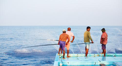 Fischer angeln Thunfisch auf den Malediven